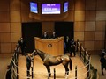 Review: Fasig-Tipton Kentucky Winter Mixed Sale