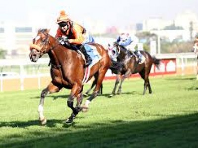 Preview: Durban July 2018 Image 3