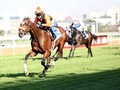 Abashiri Suffers Career Ending Injury During Durban July 201 ... Image 1
