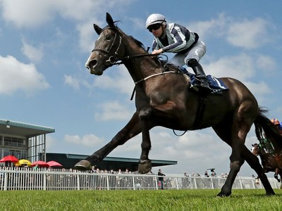 Alpha Centauri And Saxon Warrior Retired With Injuries Image 1