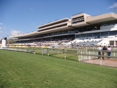 No Whip Race On Charity Mile Day At Phumelela Image 1