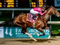 Preview: Preakness Stakes 2019 (Race Result 2018, Race Video...