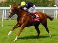 Stradivarius faces tough challenge with Cross Counter and So...