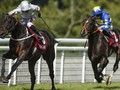 Preview: Ascot Gold Cup (Racing Info, Racing Result, Racing ...