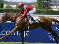 Preview: Gr.1 Prince Of Wales's Stakes (Racing Post, Racing  ... Image 2