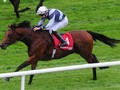 Review: Gr.1 St. James's Palace Stakes (Racing Info, Racing ...