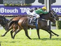 Breeding The Best Of Black Type Winners At Yarradale