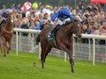 Cartier Horse of the Year Standings Topped By Blue Point