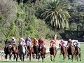 Santa Anita Creating New Solutions From Old Adversities
