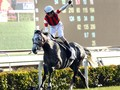 Bright Win For Japanese in Hong Kong Cup