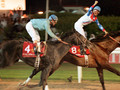 1996 Dubai World Cup Winner: Cigar