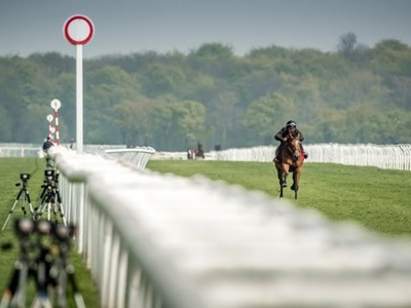 Goffs Doncaster Breeze-Up Sale Moves To Royal Ascot Week In  ...