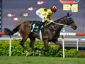 Southern Legend To Remain In HK To Race In Gr.2 Chairman's Trophy