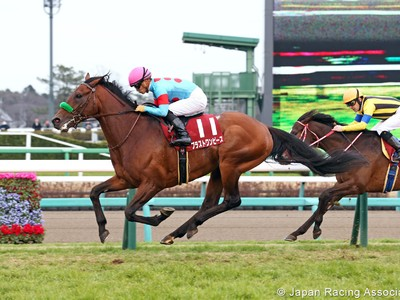 Preview: Gr.1 Osaka Hai (Runner List 2020, Racing Video, Rac ... Image 1