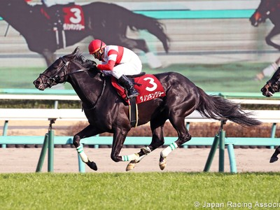 Preview: Gr.1 Osaka Hai (Runner List 2020, Racing Video, Rac ... Image 3