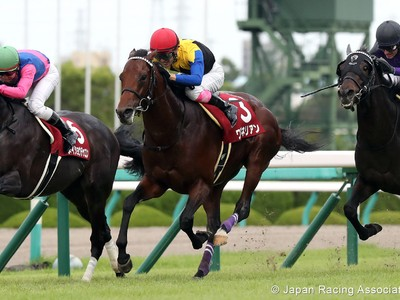 Preview: Gr.1 Osaka Hai (Runner List 2020, Racing Video, Rac ... Image 4
