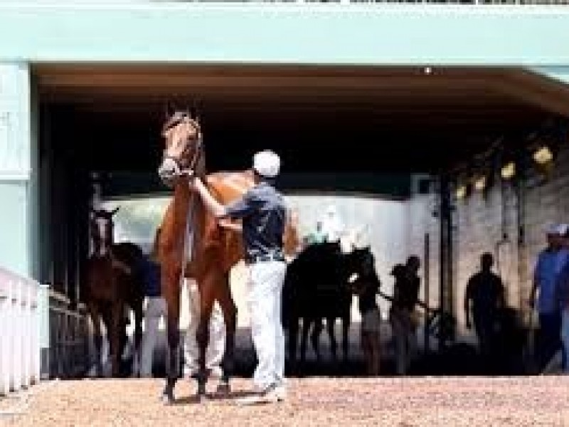 Fasig-Tipton cancels 2YO-In-Training Sale But California Fal ...