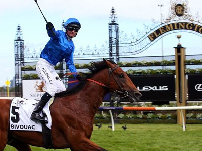 Godolphin owned-Bivouac on target for TJ Smith Stakes