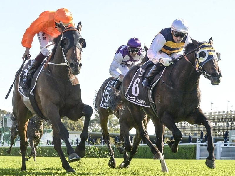 Review: Gr.1 Australian Derby ( Race Video, Race Info, Race  ...