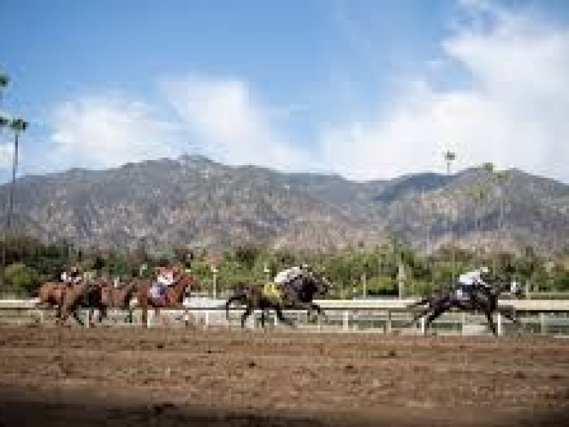 Top Races Cancelled As Santa Anita Track Remains Closed