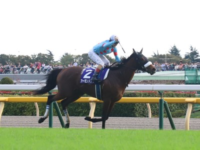 Sakae Kunieda: Almond Eye and Curren Bouquetd'or Seeking Glo ...