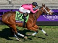 Preview: Breeders' Cup Turf Sprint 2020 (Horses, Race Info, Race video 2019)
